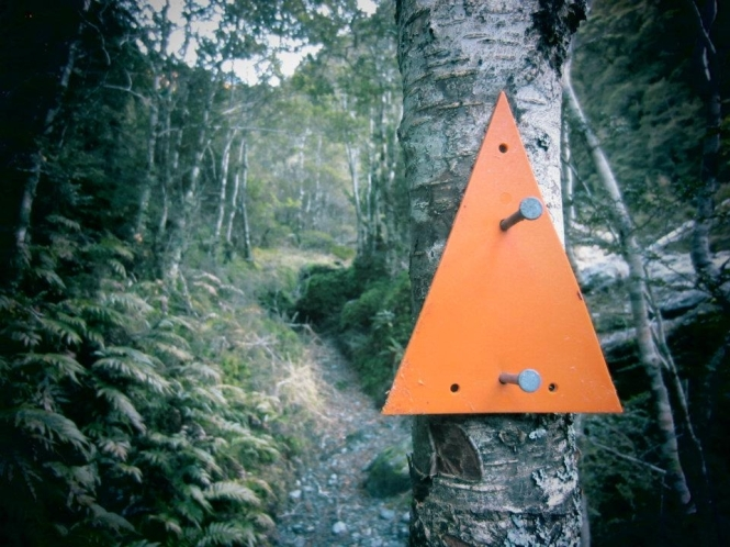 Track marker in that Matukituki valley (June 2012)