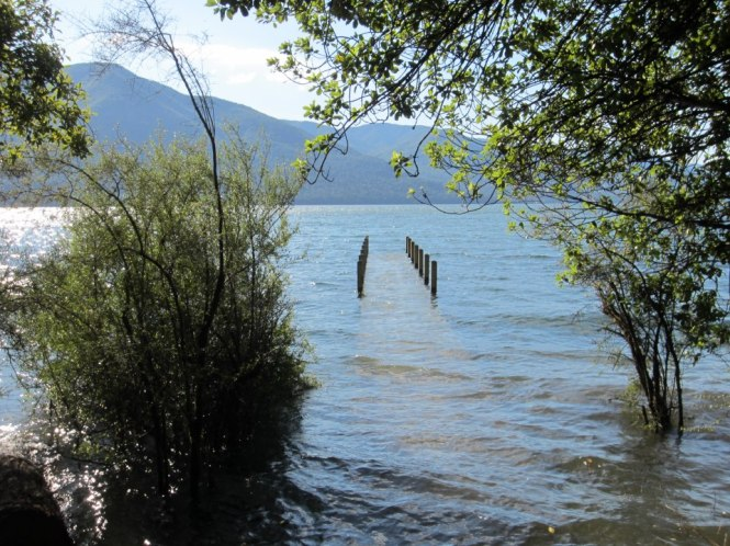 Day 5: Lake Rotoroa