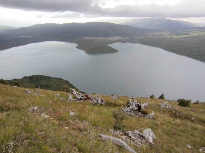 Day 1: Views over Lake Rotoiti